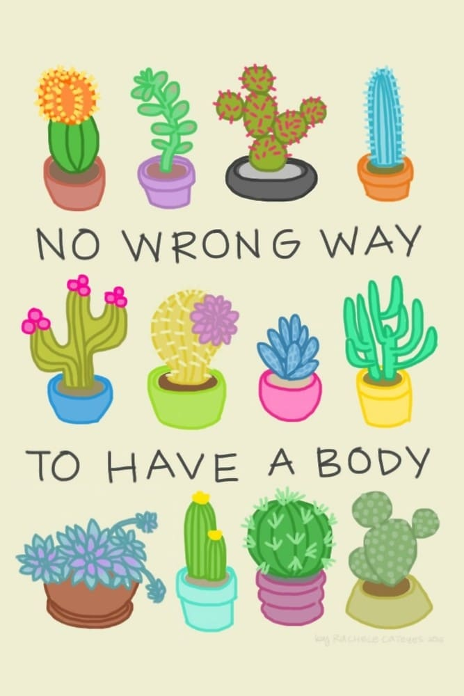 A range of cacti in different shapes and sizes and pots with text that reads No Wrong Way To Have A Body